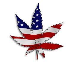 American Flag Marijuana Leaf