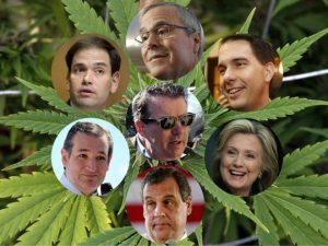 2016 Presidential Candidates Marijuana