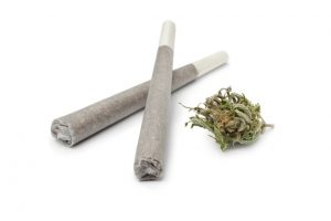 Marijuana Joints and Bud