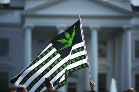 Cannabis reformers at Capitol Hill