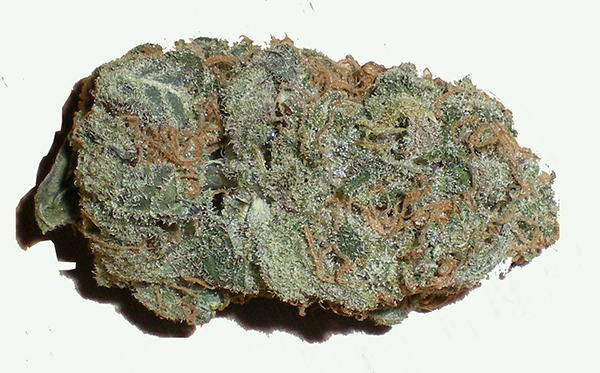 Blue Mystic - Best Indica Strains