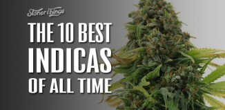 the-10-best-indicas-of-all-time