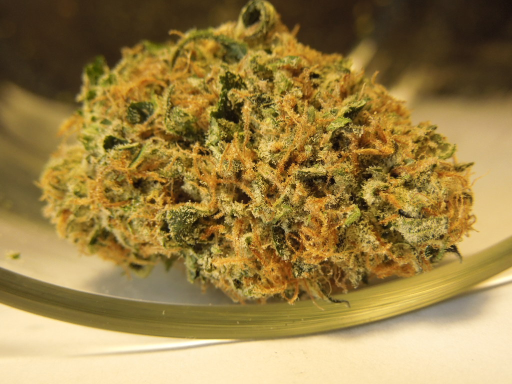 Yellow Marijuana Bud