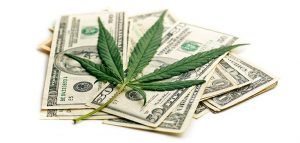 Marijuana Leaf and Cash Money