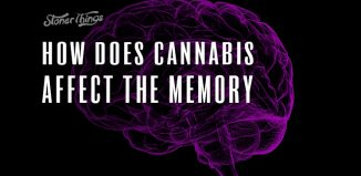 cannabis affect memory