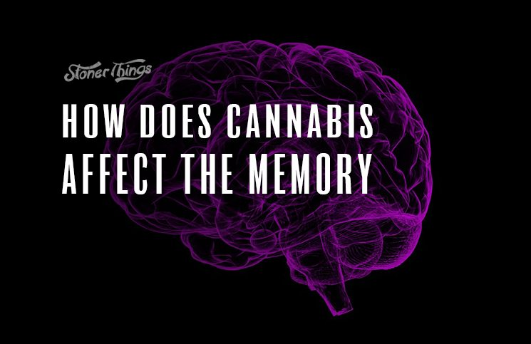 cannabis affect memory
