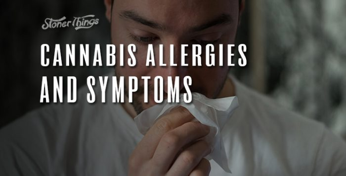 cannabis allergies symptoms