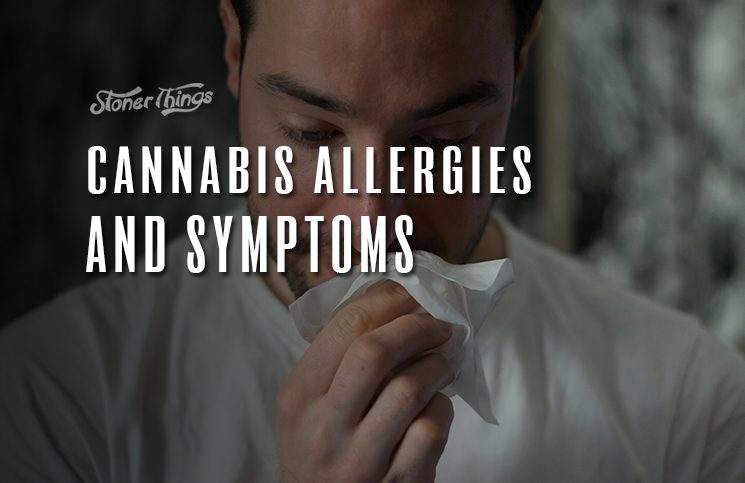 cannabis allergies symptoms