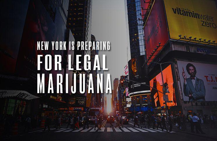 new york preparing legal marijuana
