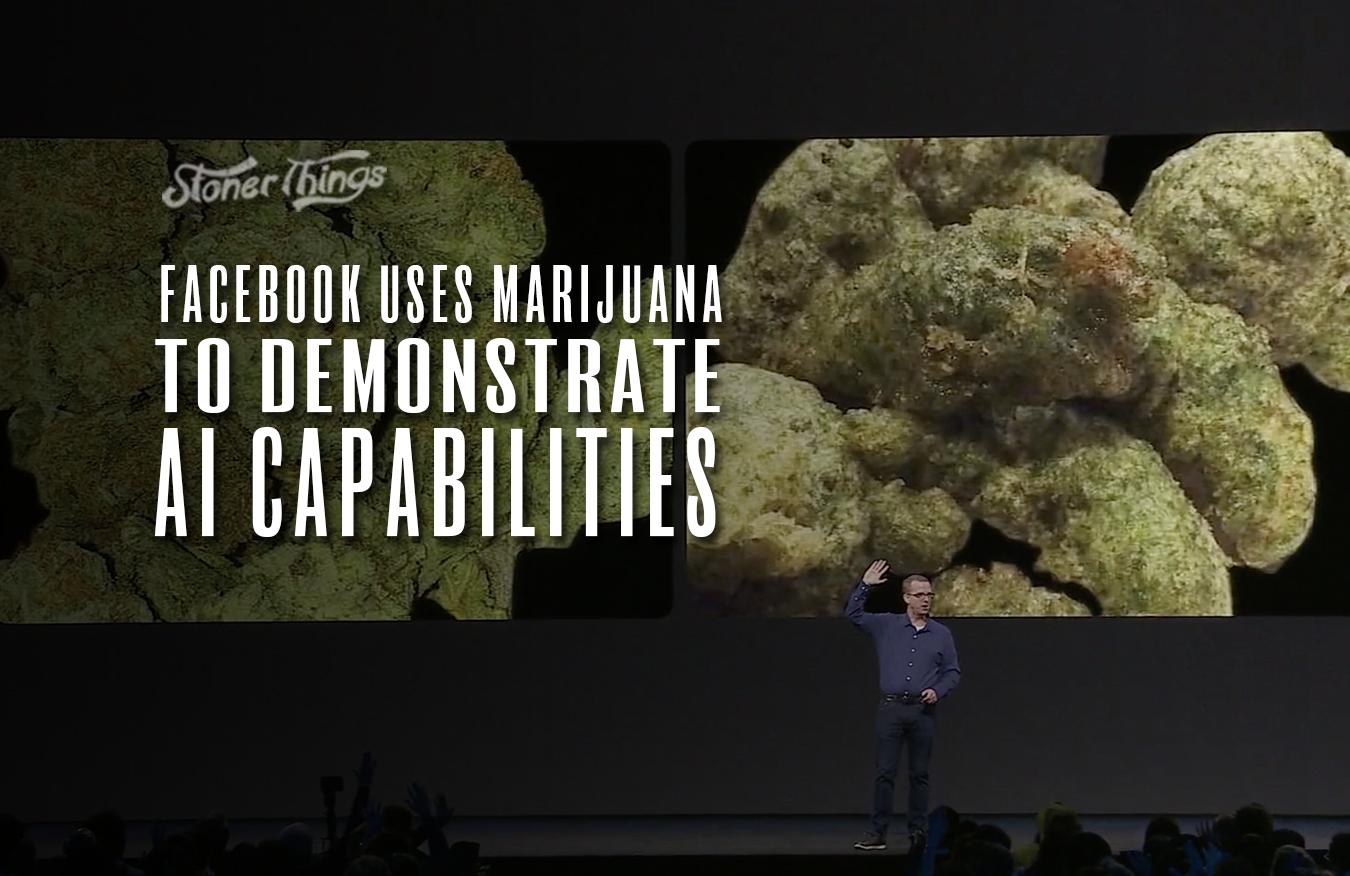 facebook marijuana ai