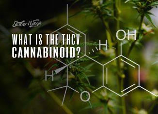 thcv cannabinoid