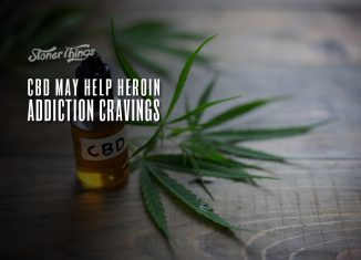 cbd heroin addiction cravings
