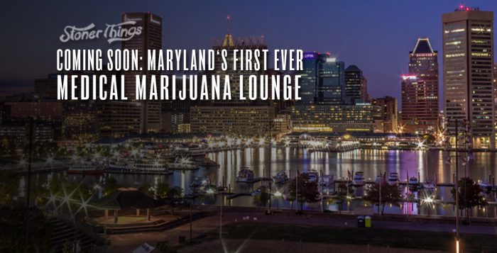 maryland first medical marijuana lounge