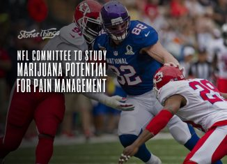 nfl marijuana pain management