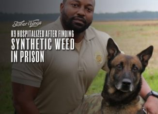 K9 hospitalized after finding synthetic weed prison