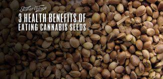 health benefits eating cannabis seeds