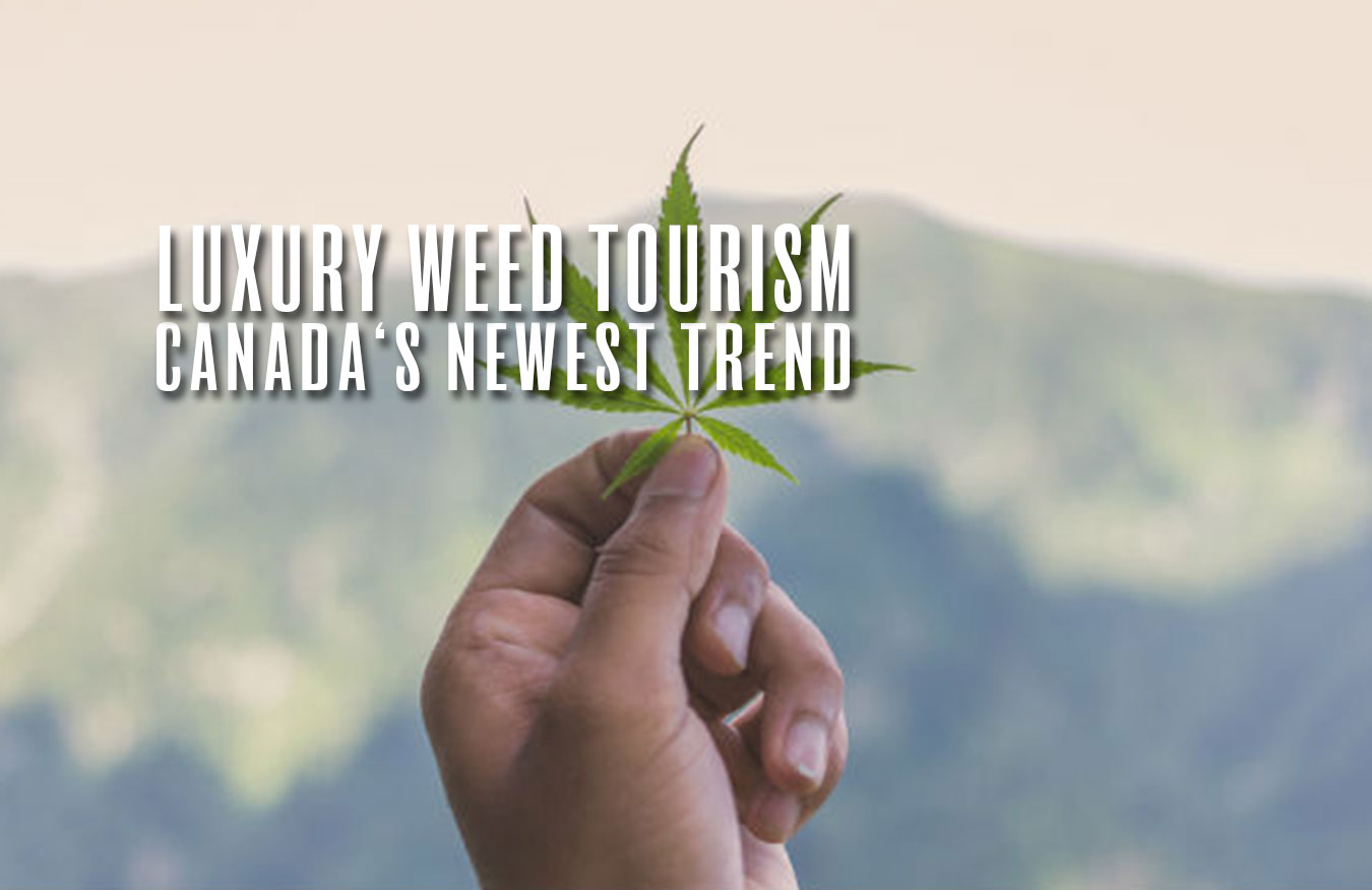 luxury weed tourism canada