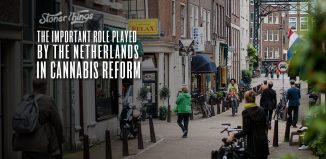 netherlands cannabis reform