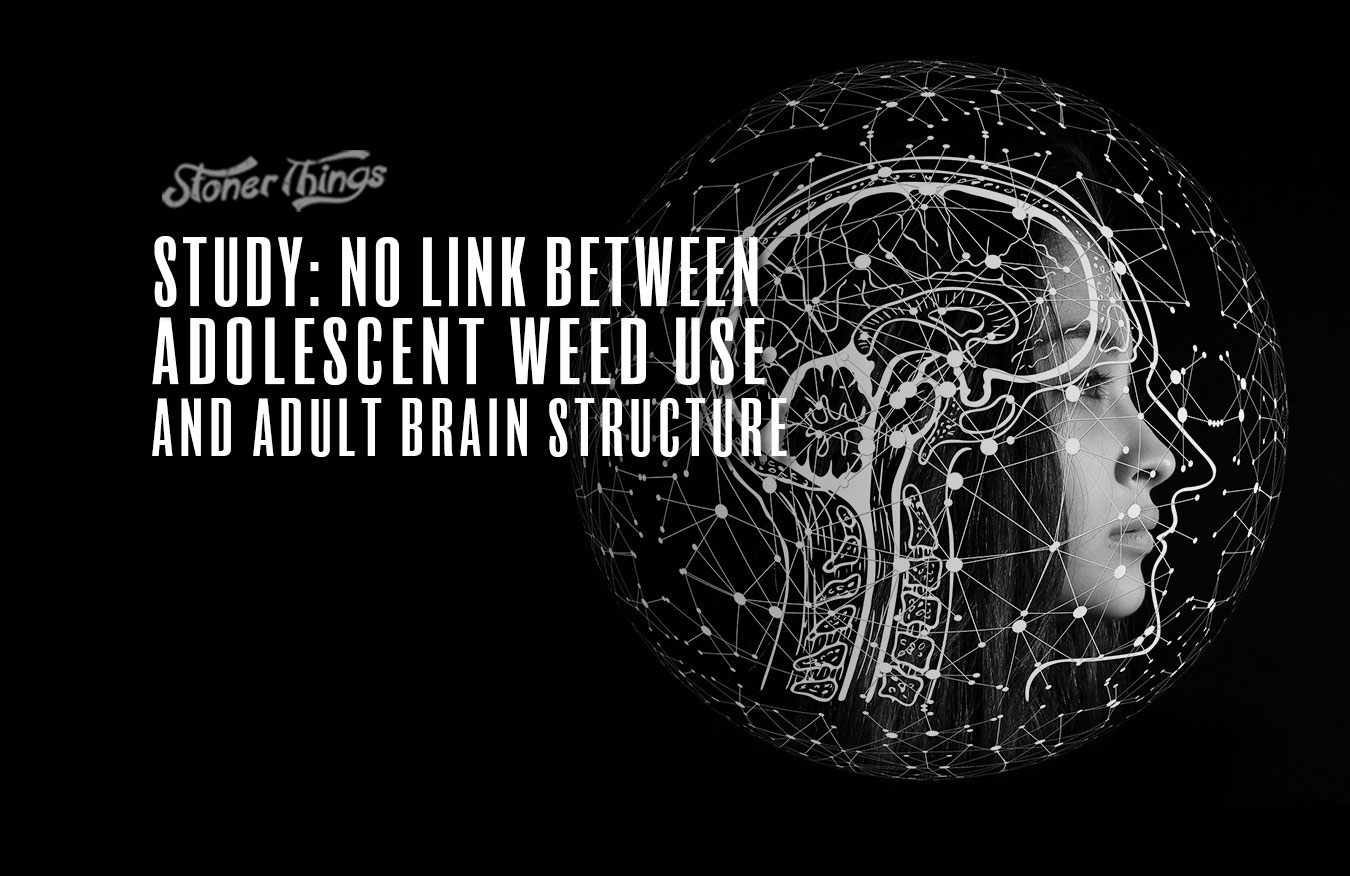 study no link cannabis smoking brain structure.jpg