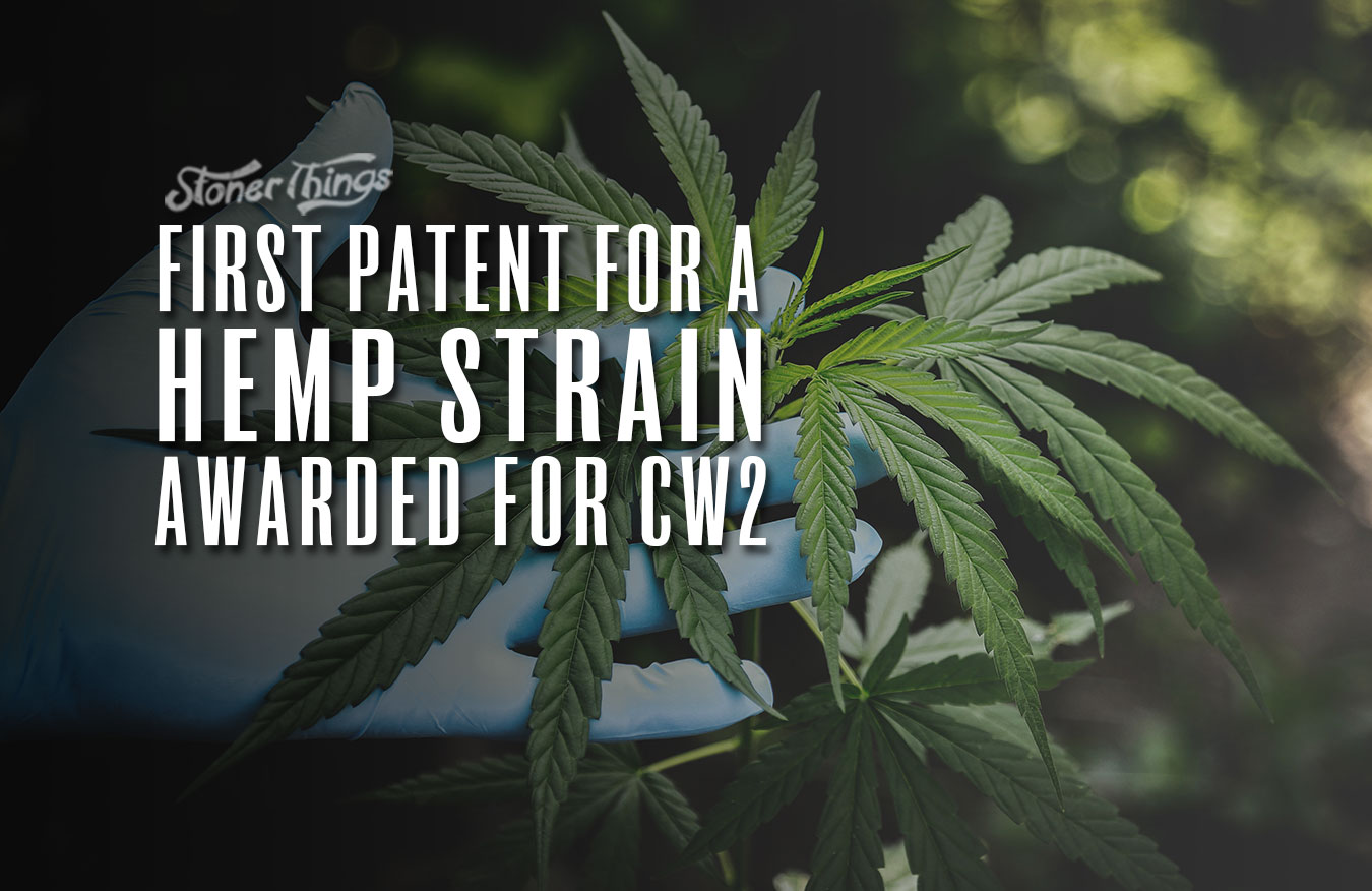 first us patent hemp strain charlottes web cb2