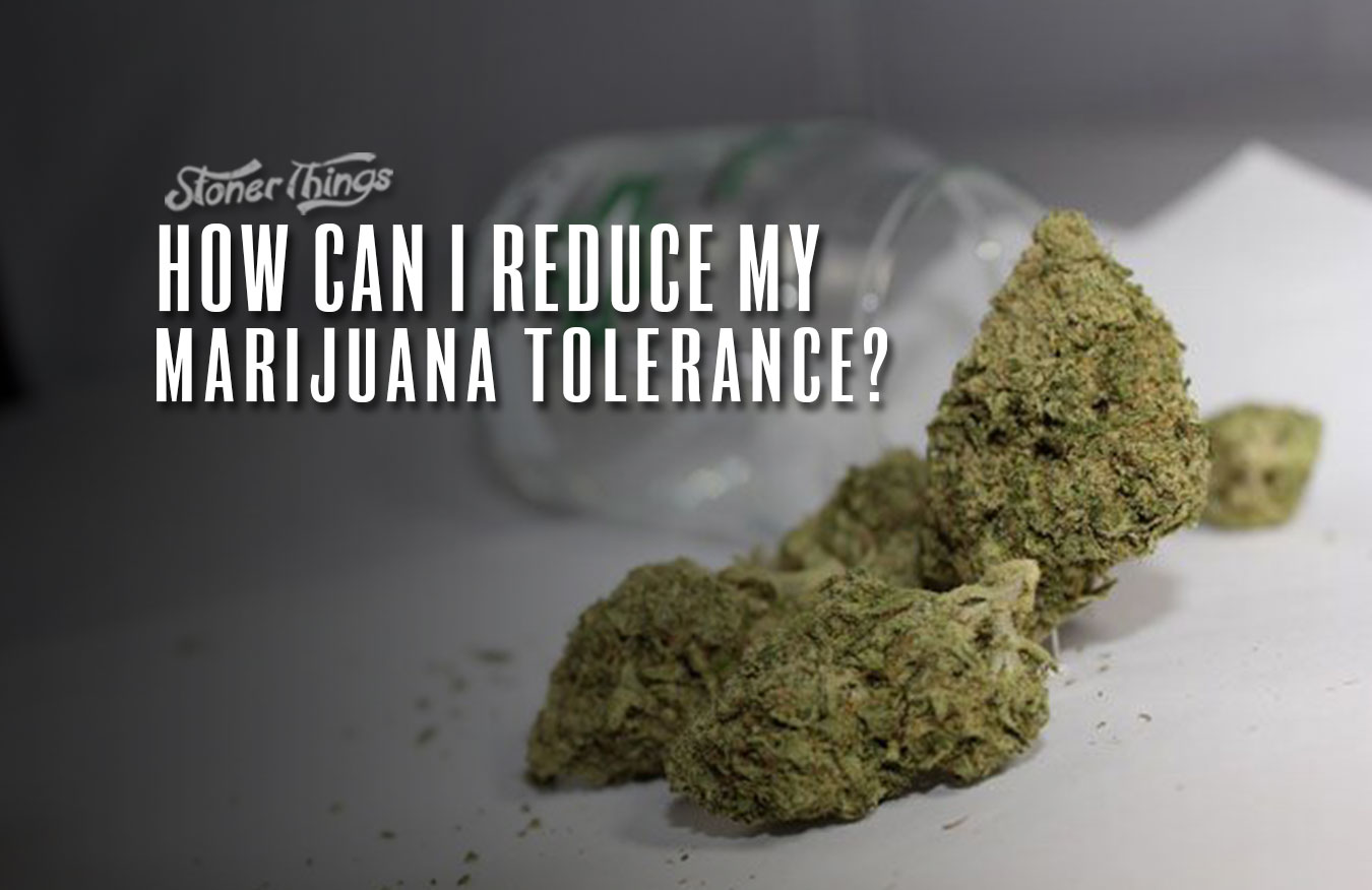 reduce marijuana tolerance