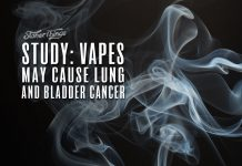 study vapes cause lung bladder cancer