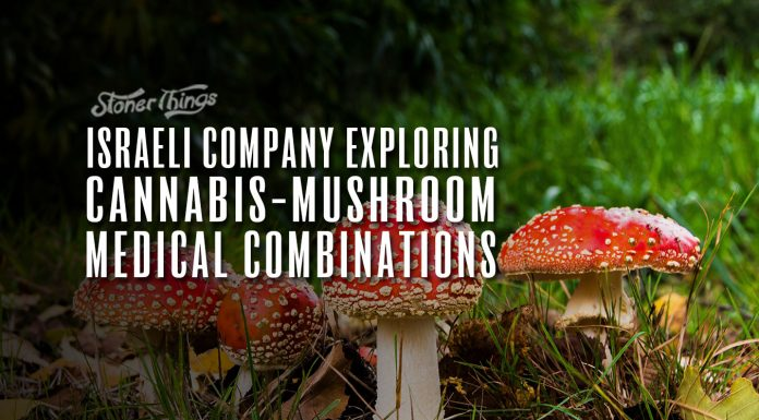 cannatech cannabis mushroom medical combination