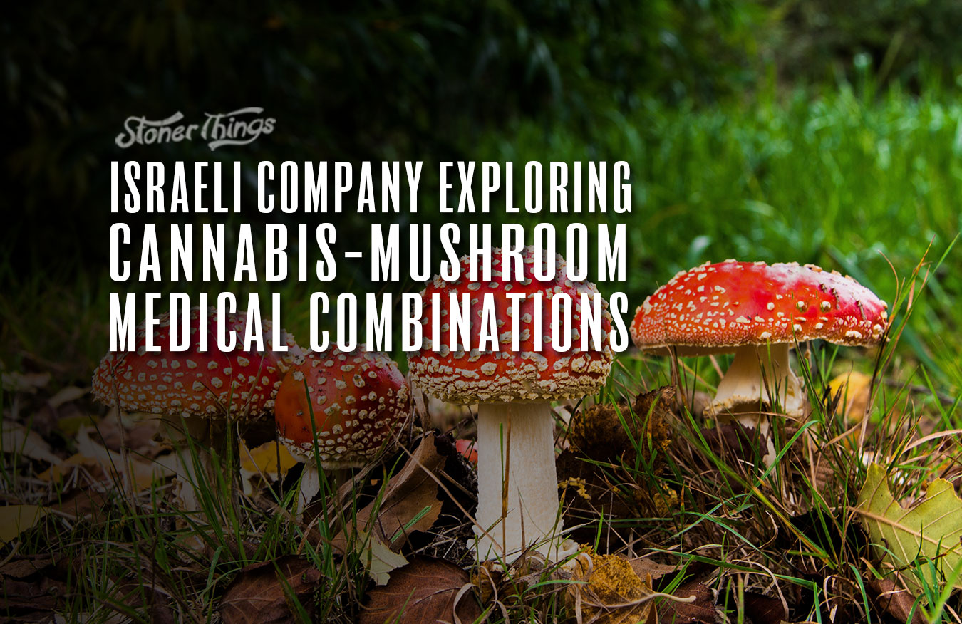 cannatech cannabis mushroom medical combination