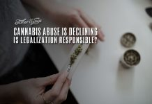 cannabis abuse declining legalization responsible