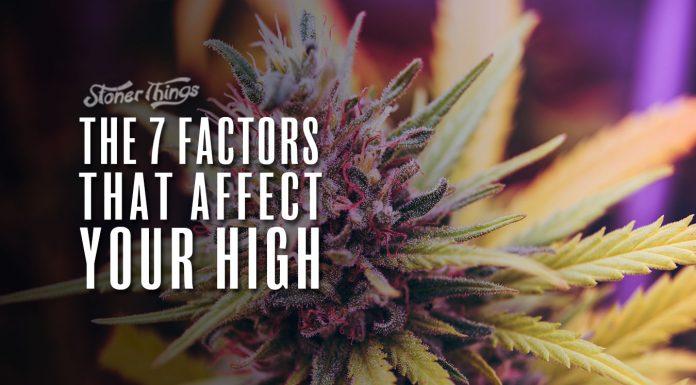 factors affect cannabis high
