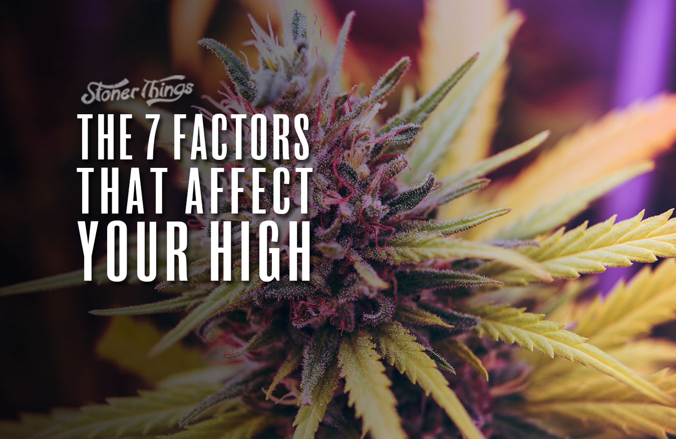 factors affect cannabis high