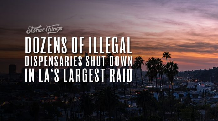 la illegal dispensary raid