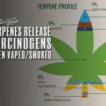 terpenes carcinogenic vaped smoked