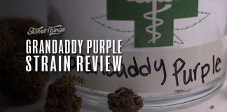 grandaddy purple strain review
