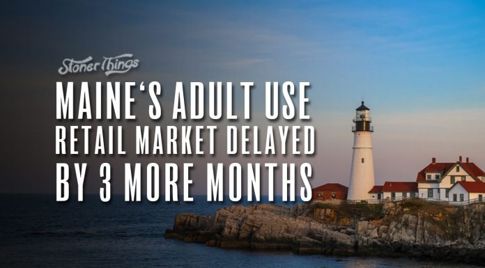 maine cannabis makret delayed three months