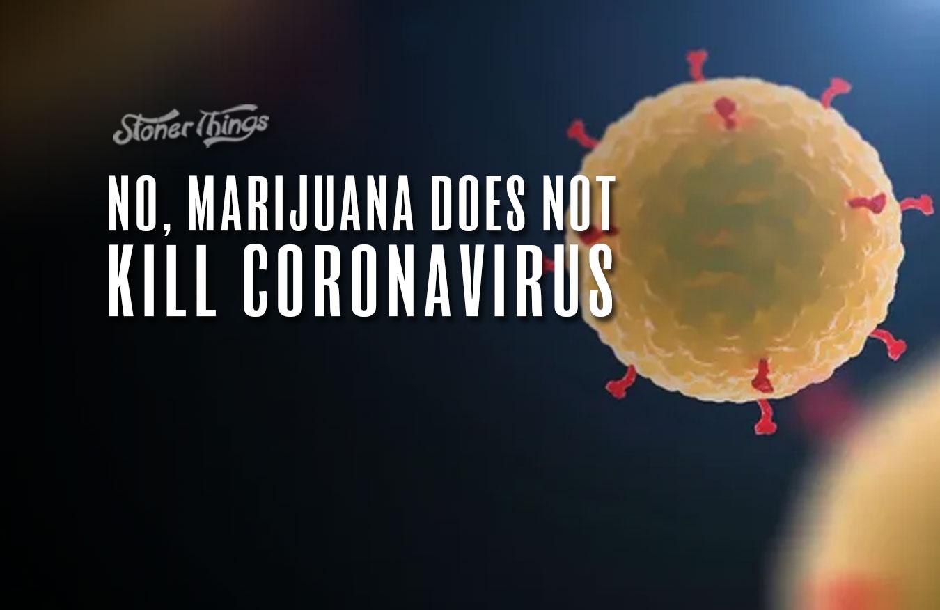 marijuana kill coronavirus