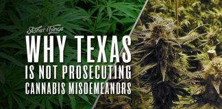 why texas not prosecuting marijuana misdemeanors