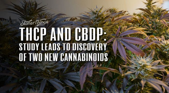 THCP CBDP New Cannabinoids Discovered