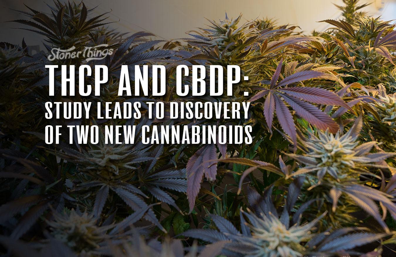THCP CBDP New Cannabinoids Discovered