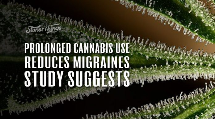 cannabis use prevents migraines