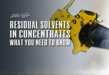 residual solvents cannabis concentrates