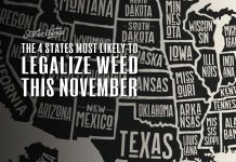 states most likely legalize weed november 2020