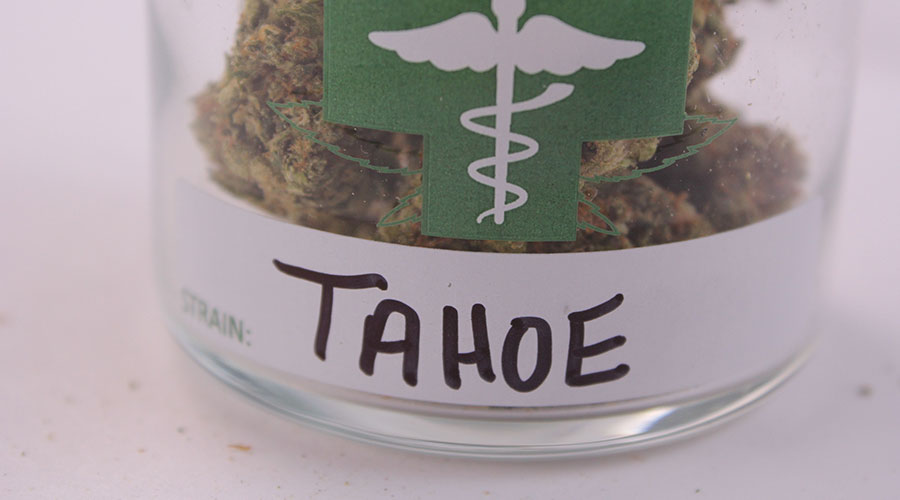 Tahoe Cannabis Review
