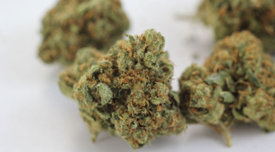 Tahoe OG Weed Review