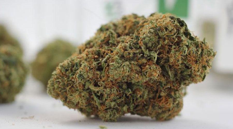 Tahoe Strain Marijuana Review