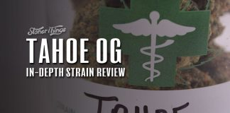 tahoe og strain review