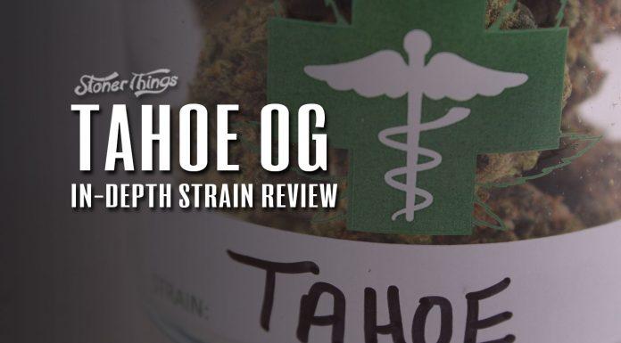 tahoe og strain review