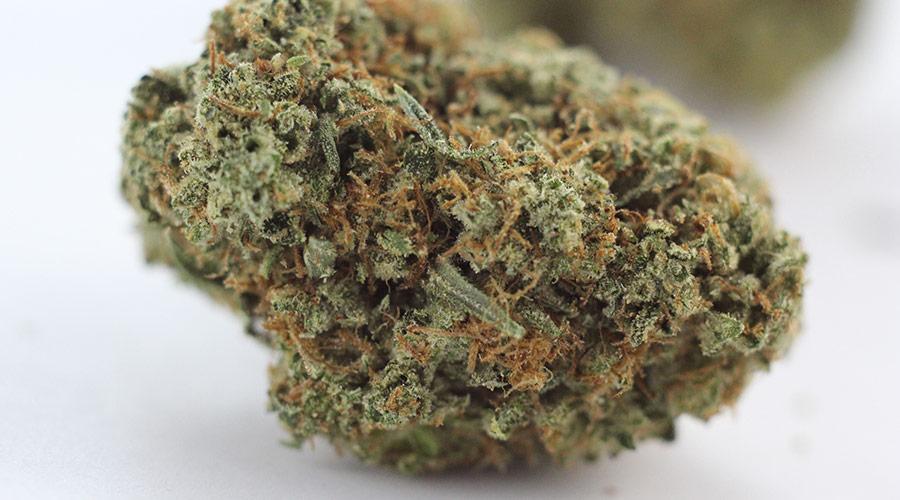 Jerry OG Marijuana Strain
