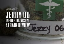 Jerry OG Strain Review