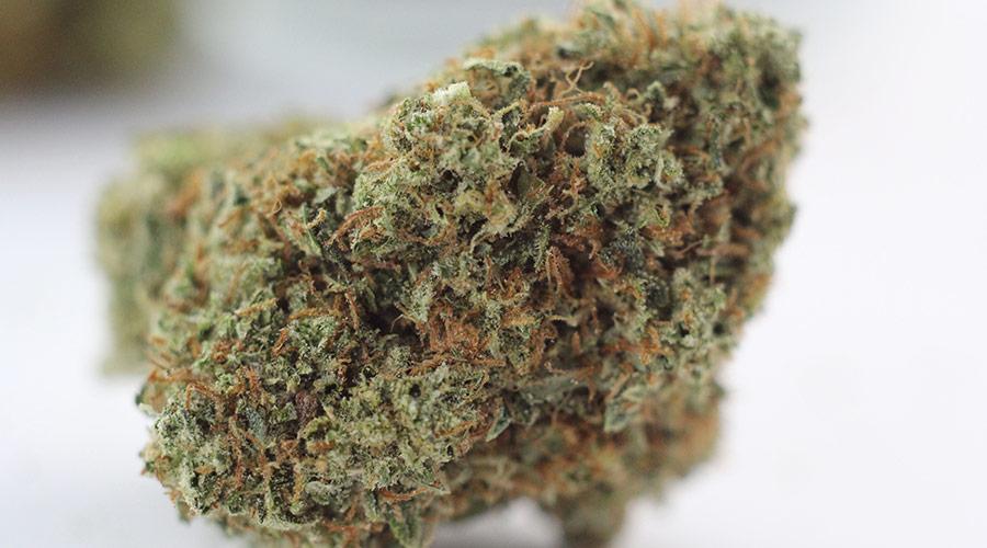 Jerry OG Marijuana Review
